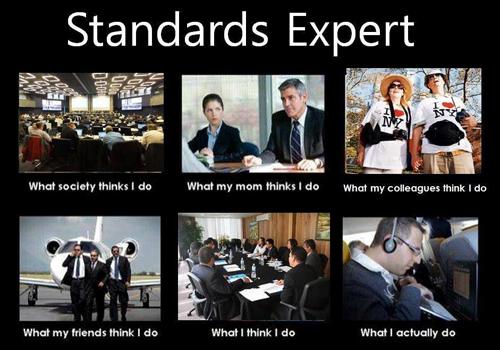 Standards Expert